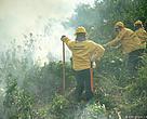 O curso ensinou na prática diversas técnicas de combate ao fogo