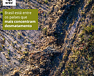 Novo relatório do WWF-Internacional aponta Brasil como um dos países que mais concentram desmatamento