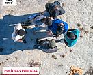 Retrospectiva 2020 - Políticas Públicas