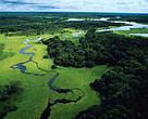 Vista aérea do Rio Negro.