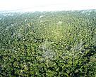 As mudan?as no Código Florestal provocariam acréscimo nas emiss?es brasileiras