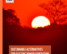 SUSTAINABLE ALTERNATIVES FOR ELECTRIC POWER GENERATION in the Upper Paraguay Basin (BAP)