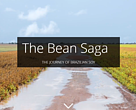 "The Bean Saga – the Journey of Brazilian Soy"" is a digital platform designed to facilitate understanding of soybean production in Brazil, its arrival and expansion across the country's territory, the characteristics of this crop, the volumes produced by each state, the destination of this product and the main actors involved in the process"