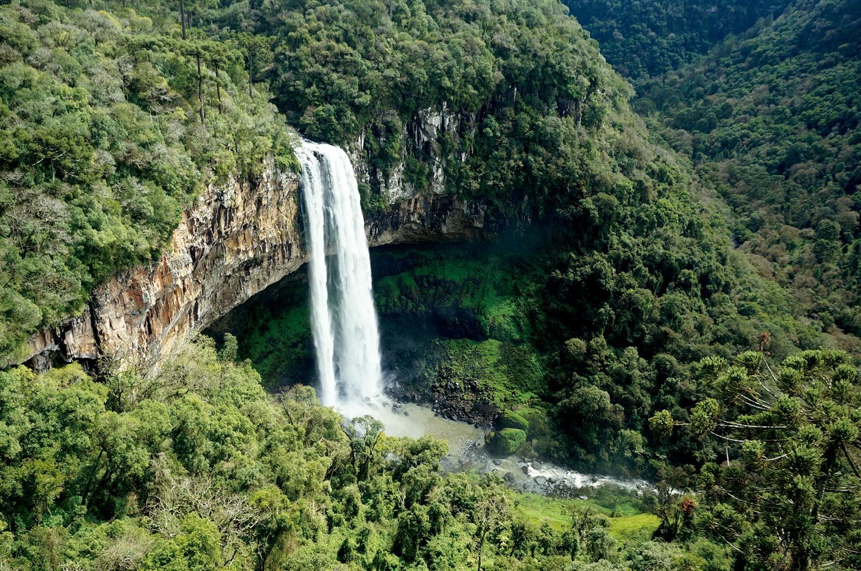 Mata Atlântica: Cascata do Caracol, nos Parques da Serra, em Canela - Rio Grande do Sul